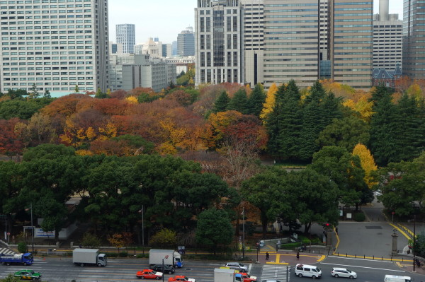 Fall in Osaka