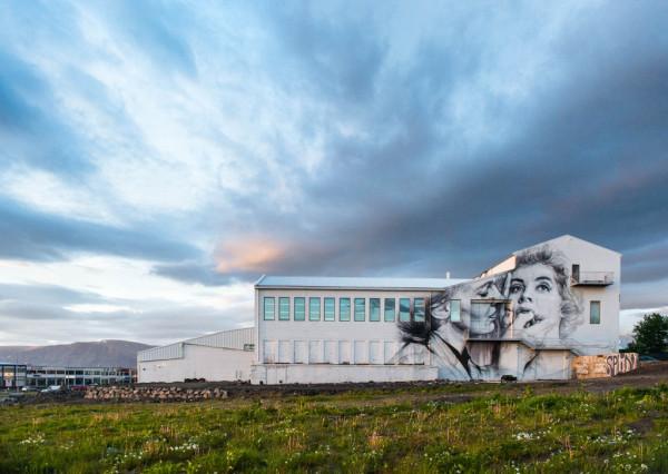 iceland-reykjavik-2-1024x727