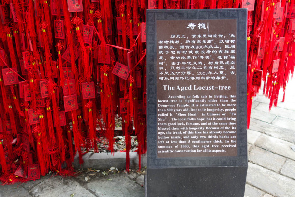 beijing-temples-china-9