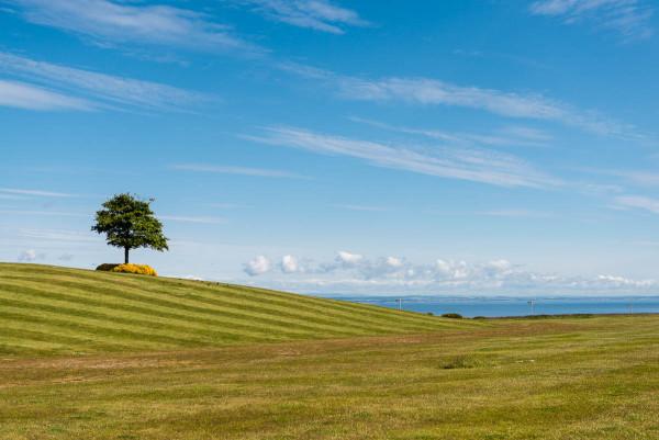 Un terrain vert et agréable. Mince, c'est en Angleterre !