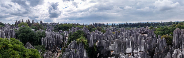 china-shilin-stone-forest-2