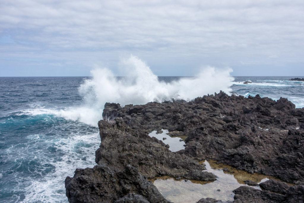 Heiße Küken in Hawaii
