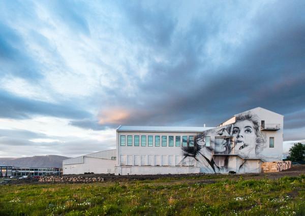 iceland-reykjavik-2