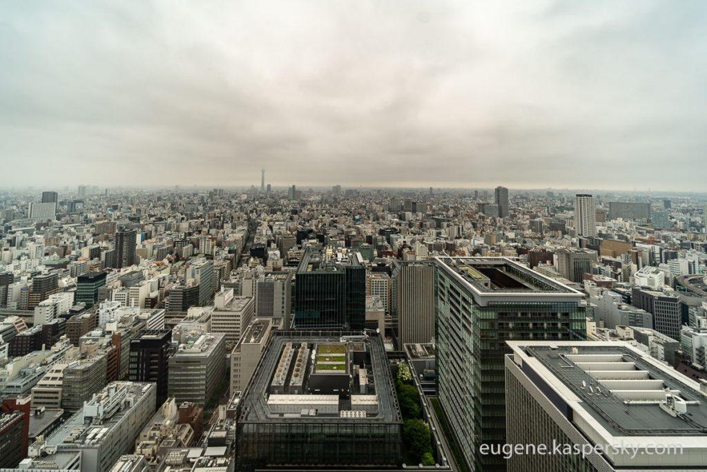 東京の雨、地殻変動の疑問、ロシアの広大な大地、暮れない夕暮れについて