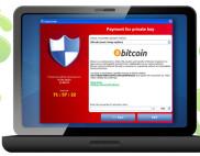 масштабы заражения CryptoLocker