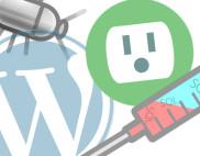 WordPress plugin bug
