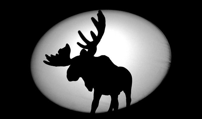 Moose атакует Instagram