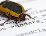 software-bugs-patches