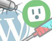WordPress-plugin-bug