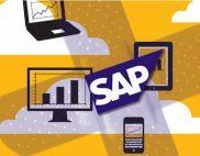 SAP-patches