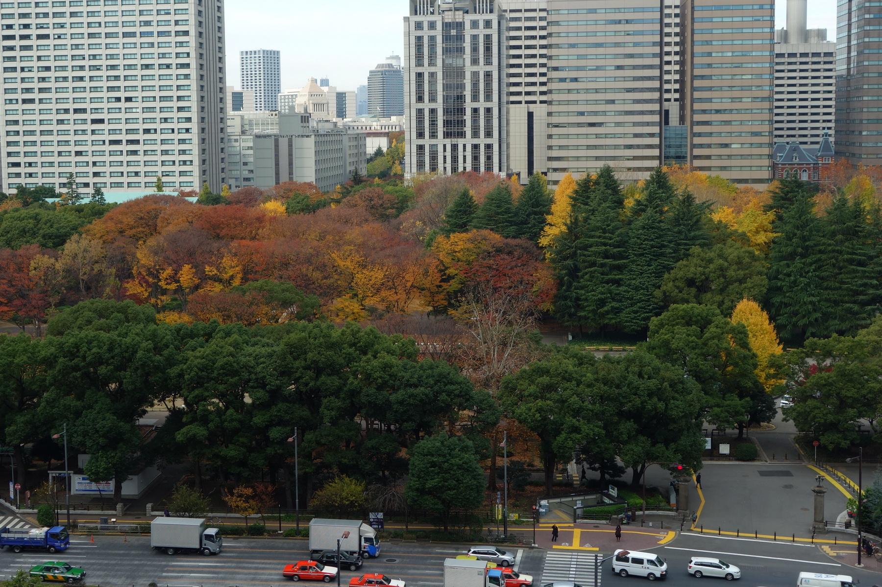 东京-大阪-箱根