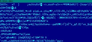 flash-exploit_10