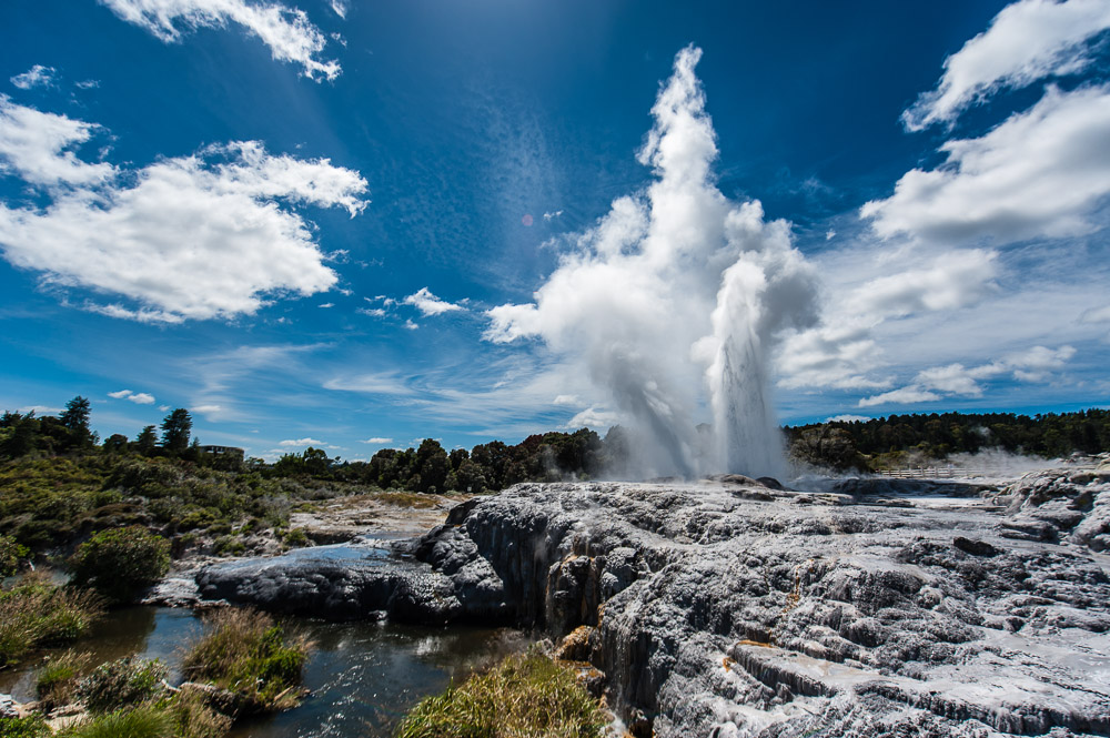 New Zealand, Geyser Pohutu