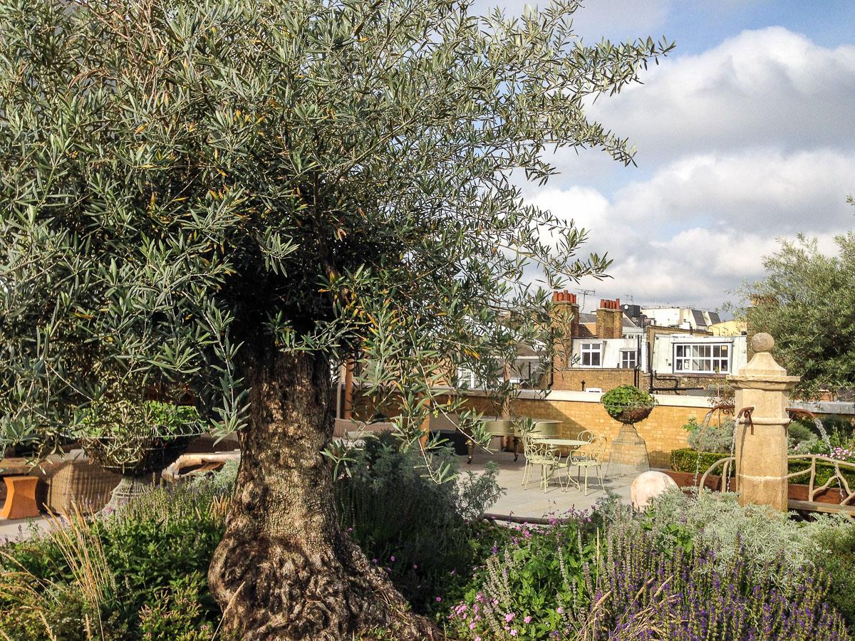 ham yard hotel london ham yard salad roof nota bene eugene kaspersky 39 s official blog. Black Bedroom Furniture Sets. Home Design Ideas