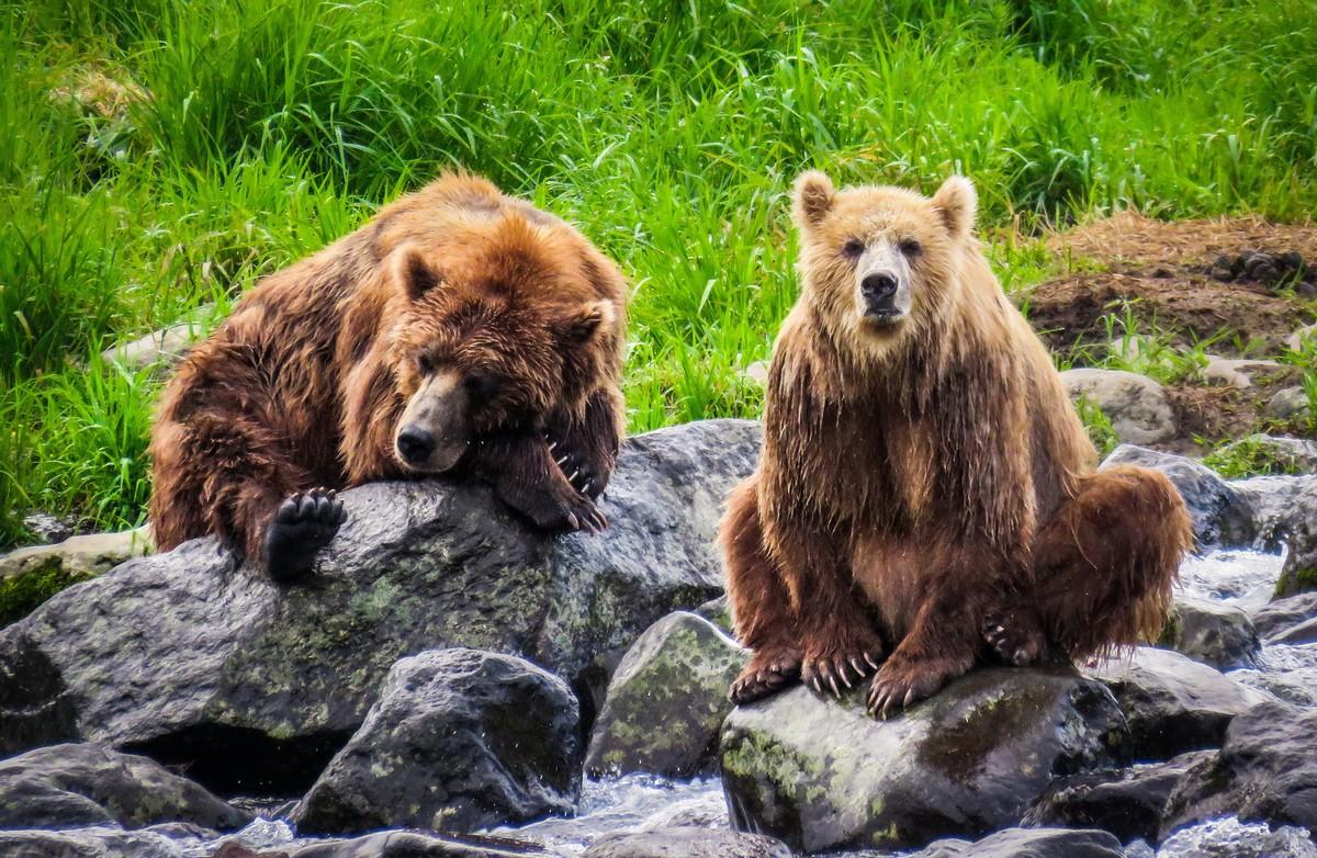 The kings of Kamchatka.