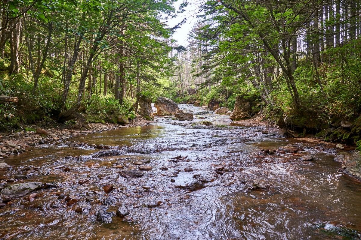Up an orange stream – for a fumarole-stroll.