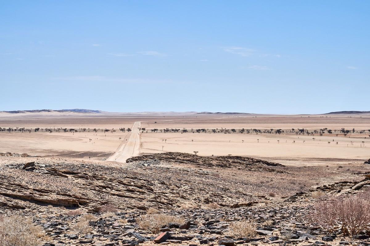 Deeper into Namibia: the bluest sky, the Tropic of Capricorn, and odd-shaped aloe & cactii.